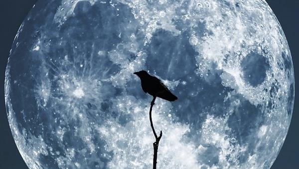 Moon 61888 640 mini